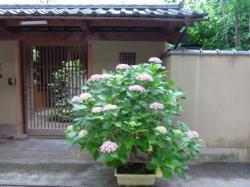 blog 2011.06.24 2