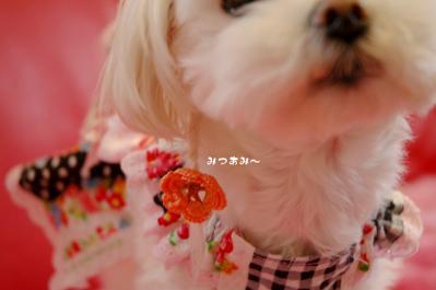 20090703-010.jpg