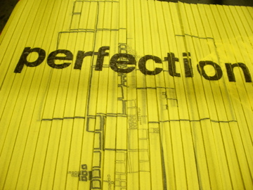 perfection experiment