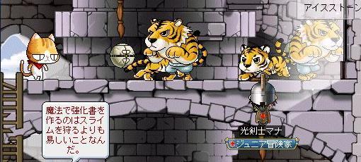 とら・虎・トラ・寅