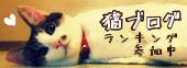 にほんブログ村*猫ブログ