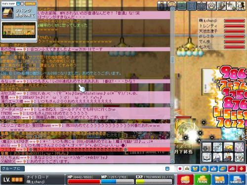 Maple0035_convert_20090219114528.jpg