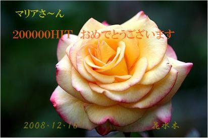 152353_1229399929.jpg