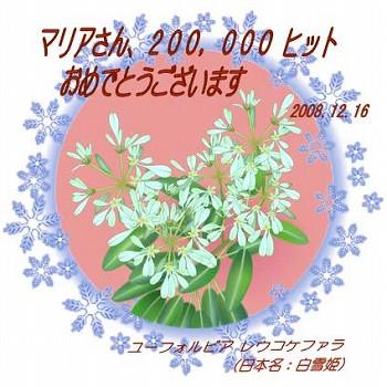s-152353_1229435193.jpg