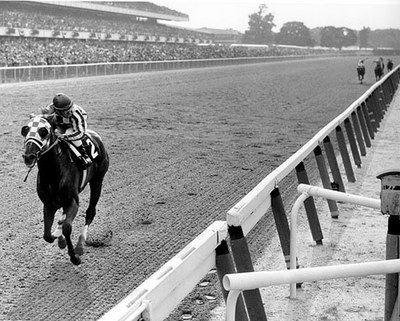 Secretariat The Photo