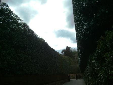 銀閣寺の入り口