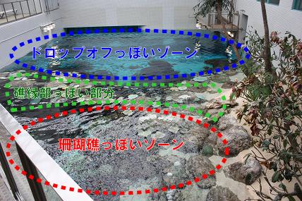 IMG_43180-2.jpg