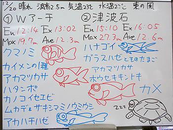 081220bloga.jpg