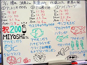 081221bloga.jpg