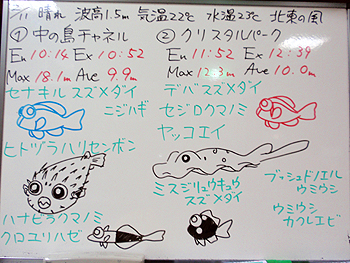 090211bloga.jpg