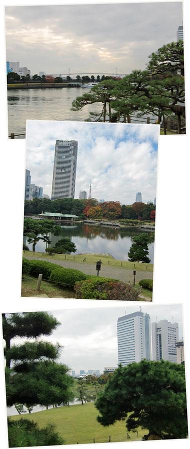 hamarikyu2010-11-enkei.jpg