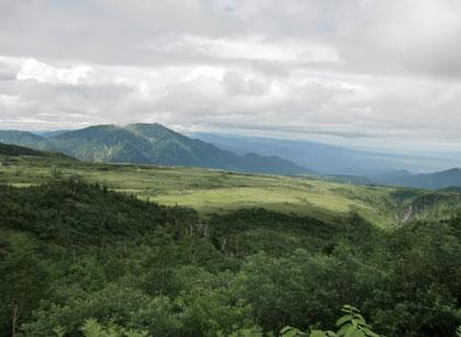 midagahara2010-8.jpg