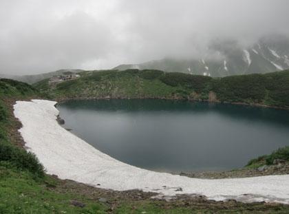 mikurigaike2010-8.jpg