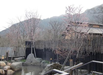 miyama-roten2010-5.jpg