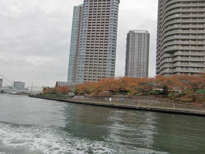 suizyou-kouyou2010-11.jpg