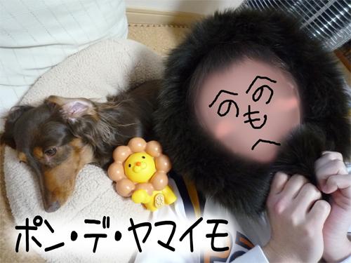 pon-yama_20090109132652.jpg