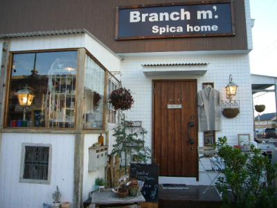 Branch m' spica home
