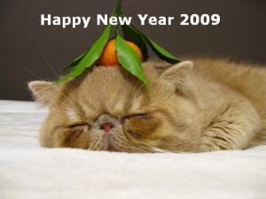 new year mameta 1