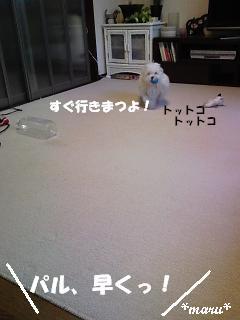 DVC00285_M.jpg
