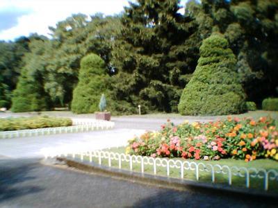 唯一の花壇らしい花壇