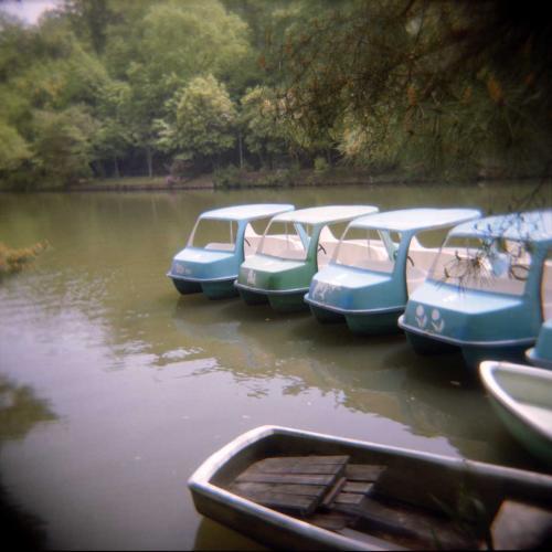 もっと幻想的に写って欲しかったボート
