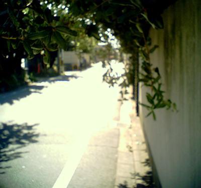 記憶への道