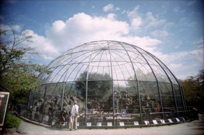 鳥類のためのドーム