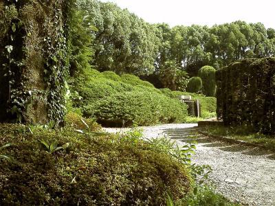 もう一つの視点による園内の光景
