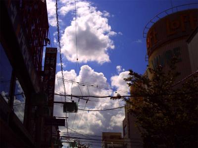 夏の空の写真1