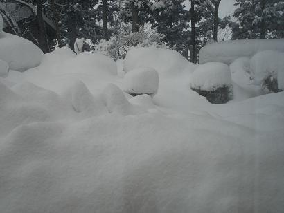 なんじゃこの雪
