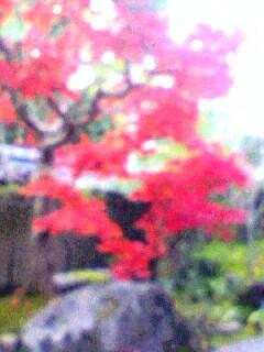 Image248-0001.jpg