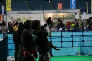 2009-02-14 15わんにゃんドーム 253