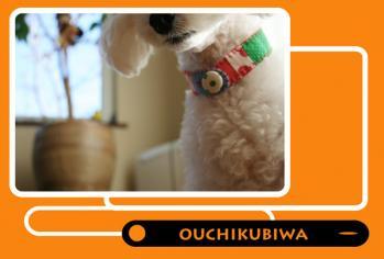 ouchikubiwa-1a.jpg