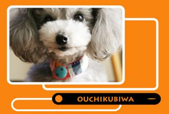 ouchikubiwa-2a.jpg