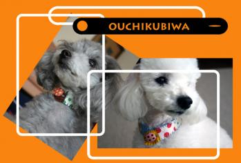 ouchikubiwa-3a.jpg