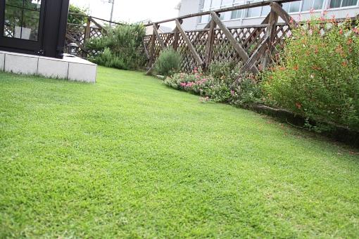 2010年9月の芝