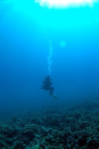 smnagae-dive 056