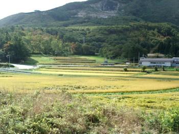 懐かしい日本の景色