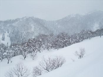 コロコロ変わる山のお天気。