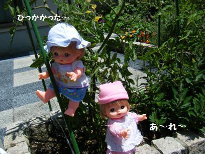 自分ちの庭といえど、外で人形セッティングしてる私って・・・。