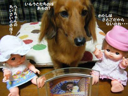 める村さんは里子とかいう問題ではなく、小さい頃がないのだよ・・・。(人形だからね)