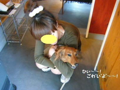 普通、若いお姉さんに抱っこしてもらうって嬉しいことなのに・・・。