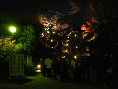 こんだけ並んでたら高台寺の中も渋滞してたんだろうなぁ・・・