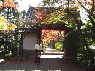 常照寺の吉野門