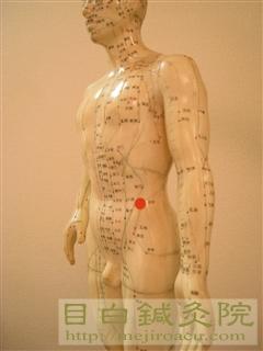 目白鍼灸院ツボ人形生理痛に効くツボ1