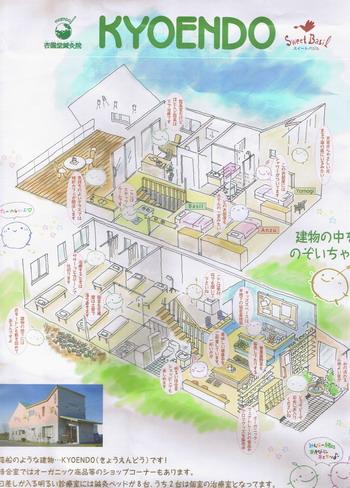 北海道杏園堂さんのあんず通信を送ってきた封筒
