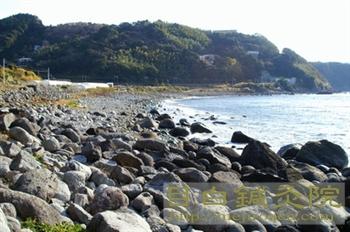 伊豆の海岸20110109
