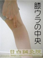 腰痛ツボ委中(いちゅう)膝ウラのツボ tarzan 肩こり