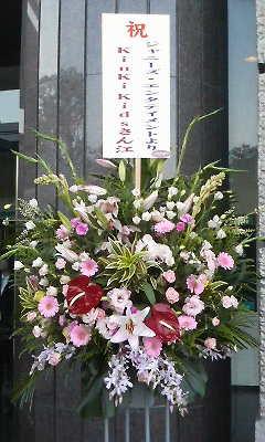 鹿児島アリーナ(花)