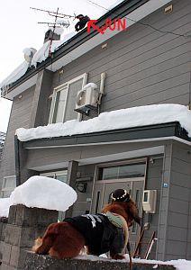 2009.12.26(土)雪下ろしIMG_0224